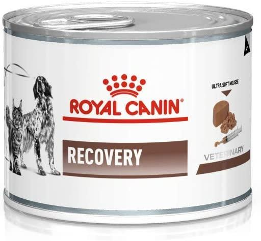 ROYAL CANIN LATA RECOVERY WET 165 gr